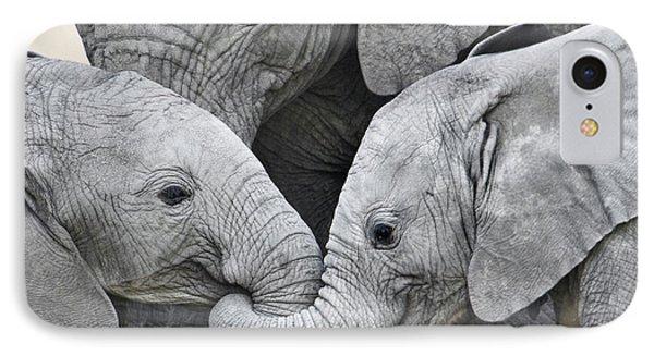 African Elephant Calves Loxodonta IPhone Case