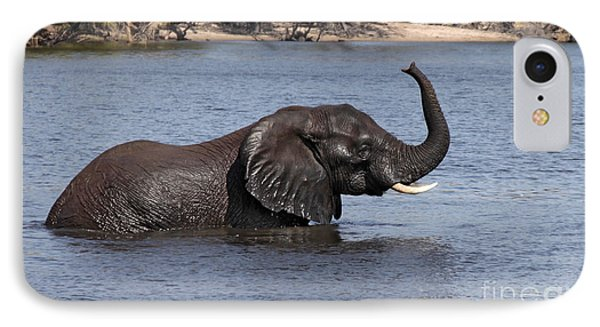 IPhone Case featuring the photograph African Elephant In Chobe River  by Liz Leyden