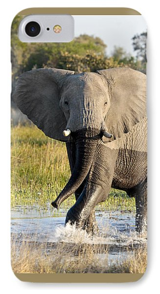 IPhone Case featuring the photograph African Elephant Mock-charging by Liz Leyden