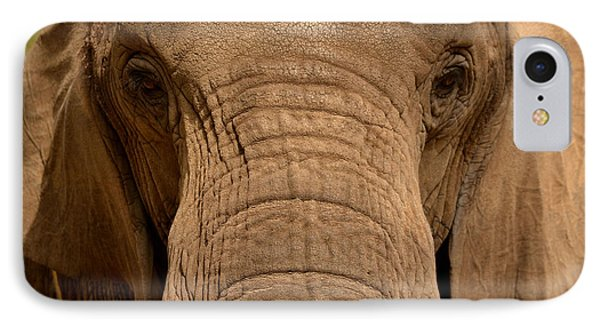 African Elephant IPhone Case by Nadalyn Larsen