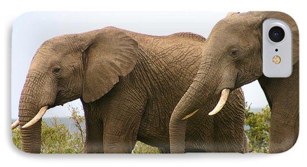 African Elephants IPhone Case by Menachem Ganon