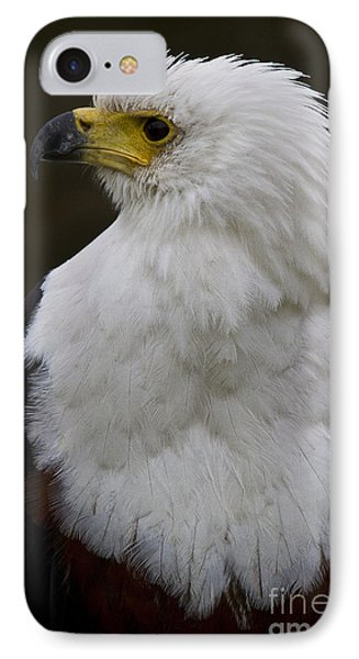 African Fish Eagle 4 Phone Case by Heiko Koehrer-Wagner