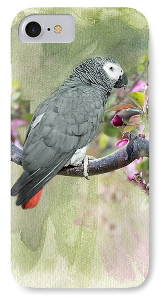 African Gray Among The Blossoms IPhone Case by Betty LaRue