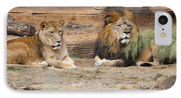 African Lion Couple 2 IPhone Case by Cathy Lindsey