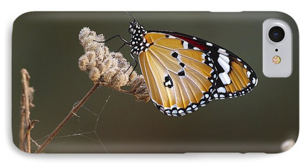 African Monarch IPhone Case by Meir Ezrachi