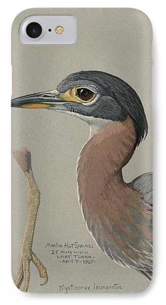 African Night Heron  IPhone Case by Rob Dreyer