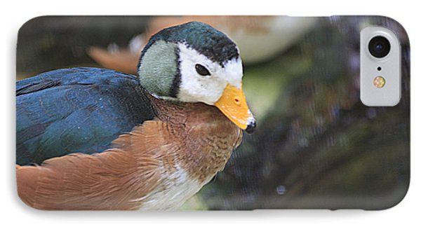 African Pygmy Goose IPhone Case by Jerry Bunger