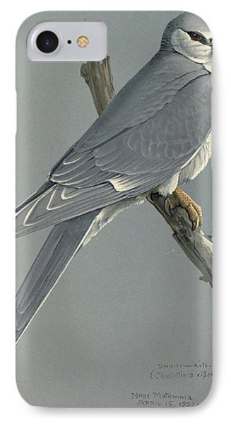 African Snow Tailed Kite IPhone Case by Rob Dreyer