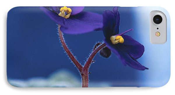IPhone Case featuring the photograph African Violet by Lana Enderle
