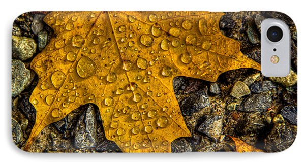 After An Autumn Rain IPhone Case by David Patterson