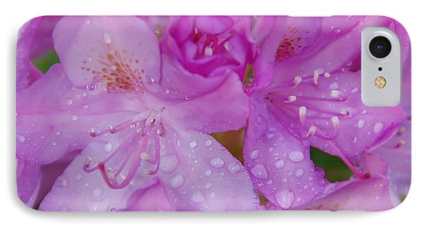 After The Rain IPhone Case by Aimee L Maher Photography and Art Visit ALMGallerydotcom