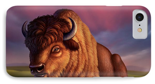 After The Storm IPhone Case by Jerry LoFaro