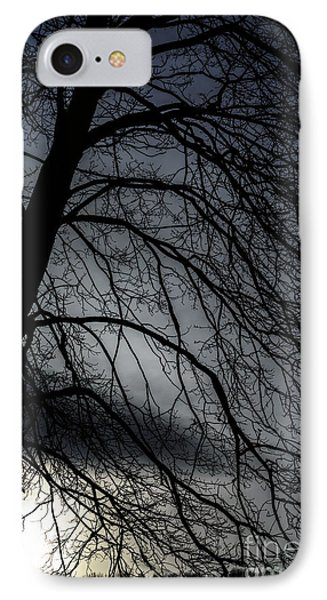 Against A Winter Sky IPhone Case