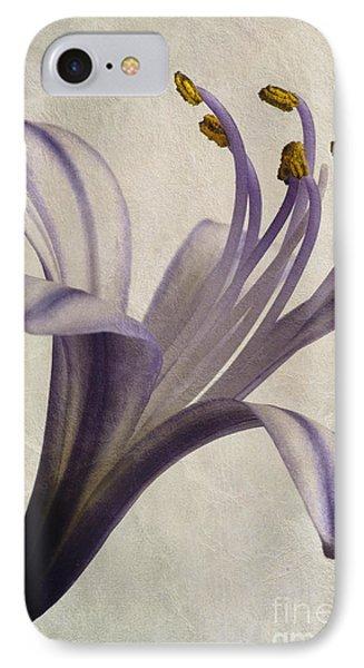 Agapanthus Africanus Star IPhone Case by John Edwards