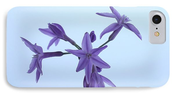 Agapanthus Blossoms IPhone Case by Richard Stephen