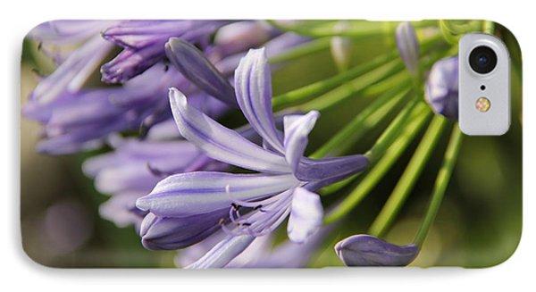 Agapanthus Flower Close-up IPhone Case