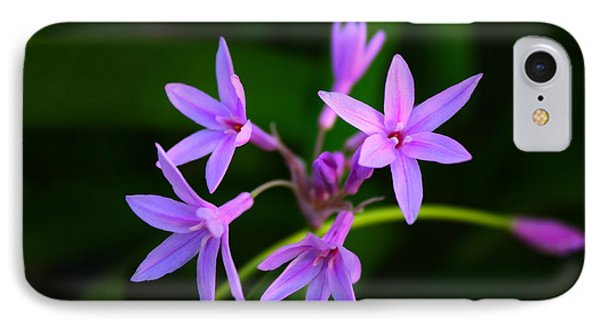 IPhone Case featuring the photograph Agapanthus by Richard Stephen