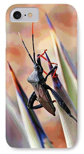 Agave Bug  IPhone Case by Tom Janca