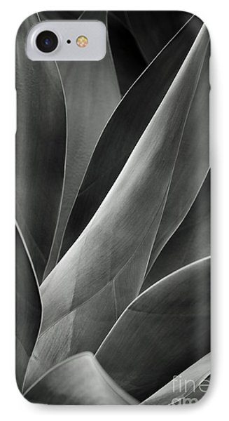 Agave In Black And White Phone Case by Charmian Vistaunet