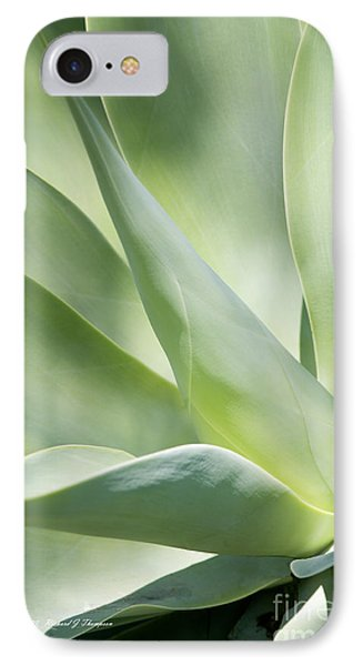 Agave Plant 2 IPhone Case