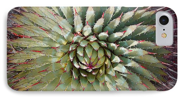 Agave Spikes IPhone Case by Alan Socolik