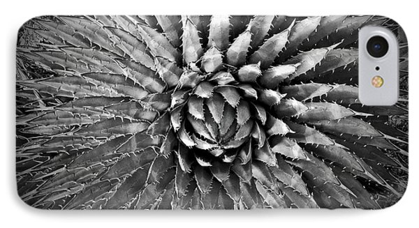 Agave Spikes Black And White Phone Case by Alan Socolik