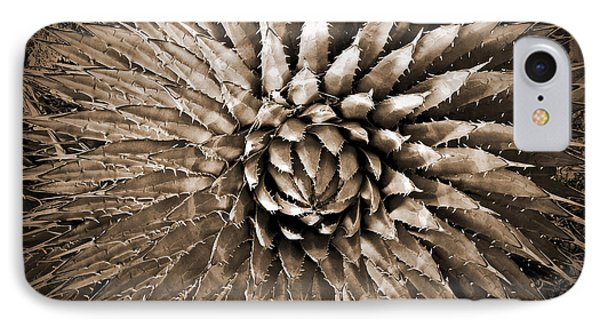 Agave Spikes Sepia IPhone Case by Alan Socolik