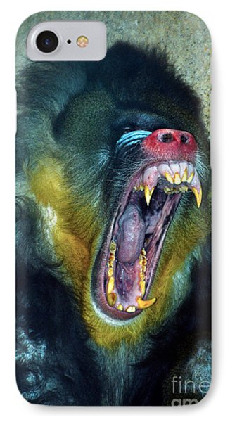 Agressive Mandrill Phone Case by Thomas Woolworth