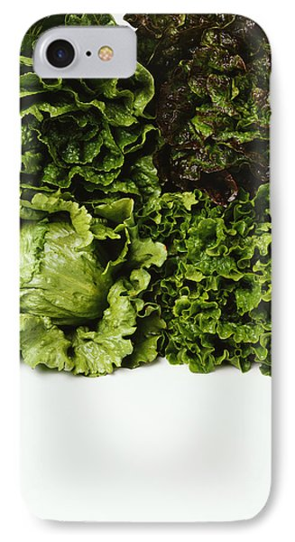 Agriculture - Heads Of Romaine, Red IPhone Case by Ed Young