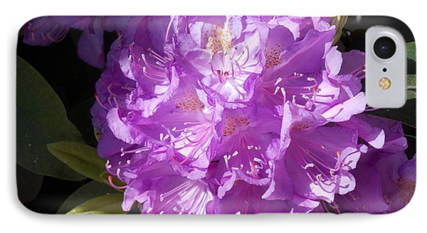 Ah Rhododendron IPhone Case