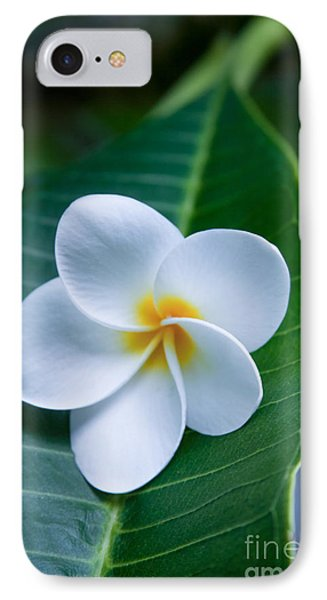 Ahui Pua Melia O Waianapanapa - Tropical Plumeria IPhone Case by Sharon Mau