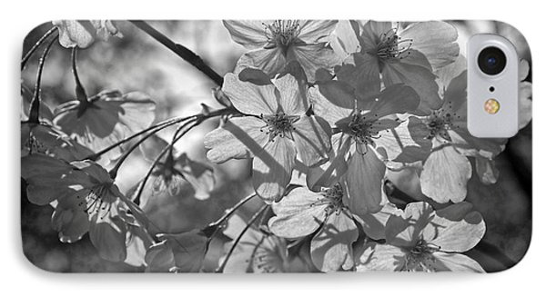 Akebono In Monochrome IPhone Case by Peggy Hughes