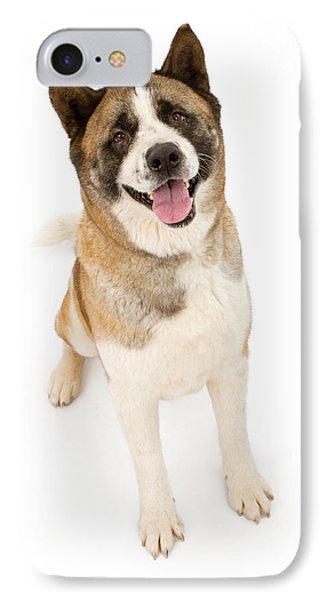 Akita Dog Sitting And Looking Forward IPhone Case by Susan Schmitz