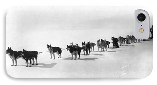 Alaska Champion Dog Sled Team 1914 IPhone Case by Daniel Hagerman