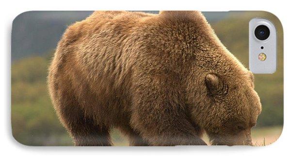 Alaska Kodiak Bear IPhone Case