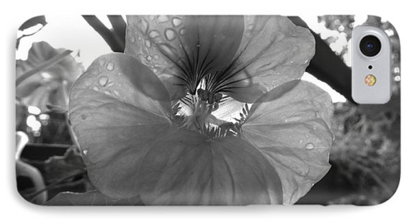 IPhone Case featuring the photograph Alaskan Rose One by Laura  Wong-Rose