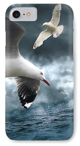 Albatross IPhone Case by Linda Lees