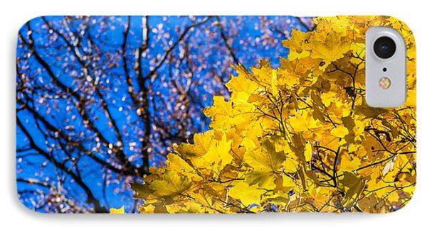 Alchemy Of Nature - Golden Streams Phone Case by Alexander Senin