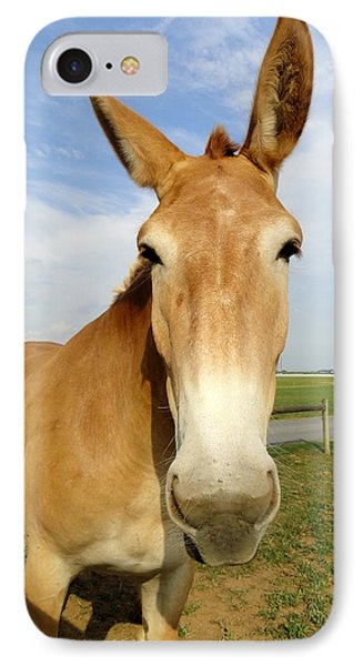 Alert And Ready To Work IPhone Case by Mary Beth Landis