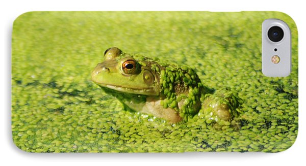 Algae Covered Frog IPhone Case by Optical Playground By MP Ray