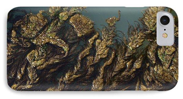 Algae IPhone Case by Ron Harpham