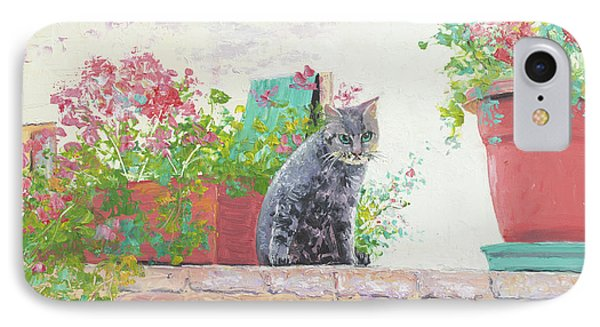 Alley Cat IPhone Case by Jan Matson