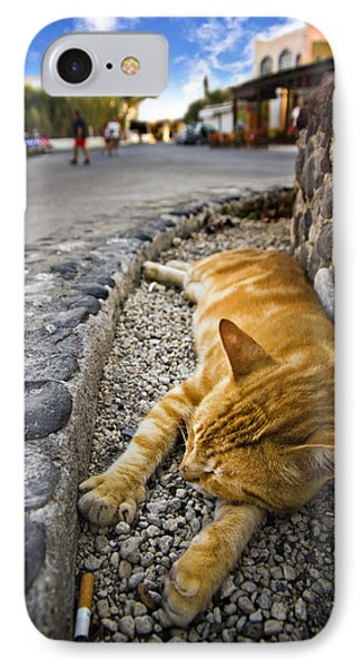 Alley Cat Siesta IPhone Case by Meirion Matthias