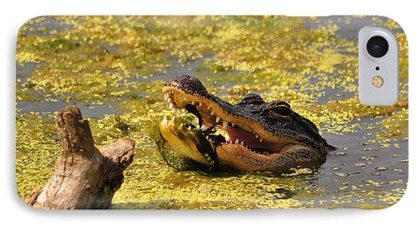 Alligator Ambush Phone Case by Al Powell Photography USA