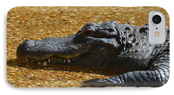 Alligator IPhone Case by DejaVu Designs