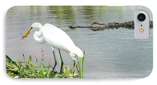 Alligator Egret And Shrimp IPhone Case by Al Powell Photography USA