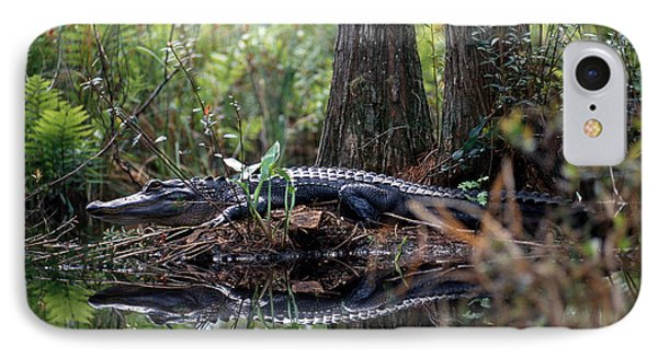 Alligator In Okefenokee Swamp IPhone 7 Case by William H. Mullins
