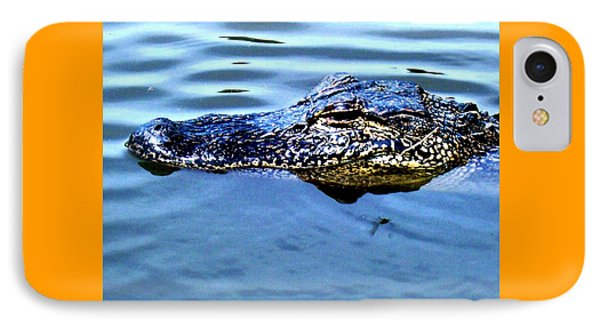 Alligator With Spider Phone Case by Robin Lewis