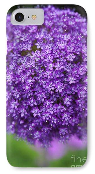 Allium Ambassador IPhone Case by Tim Gainey