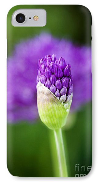 Allium Hollandicum Purple Sensation IPhone 7 Case by Tim Gainey
